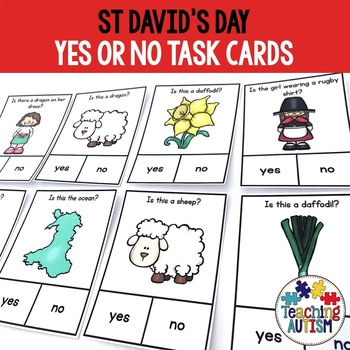 St David's Day Yes / No Questions