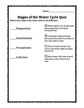 Stages of the Water Cycle