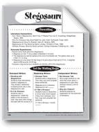 Stegosaurus Shape Book