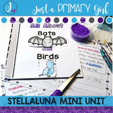 Stellaluna Book Study- Book Companion - A Bat and Birds Mini Unit