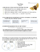 Stellaluna - Vocabulary, Comprehension, Test Prep - Text Talk