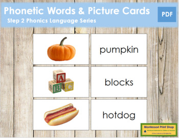 Step 2: Phonetic Words and Picture Cards (real pictures)
