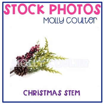 Stock Photo: Christmas Pinecone & Leaves -Personal & Comme