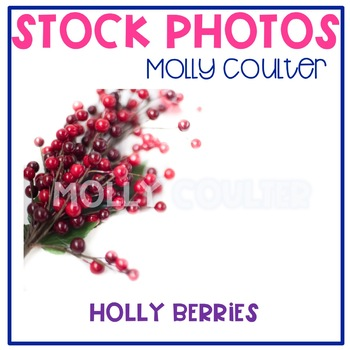 Stock Photo: Christmas Holly Berries -Personal & Commercial Use
