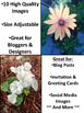 Stock Photos for Bloggers: Beautiful Blooms Set (Personal