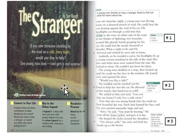 Story Arc and Plot in Short Story  - The Stranger