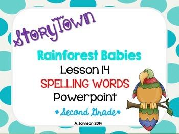 Storytown Spelling Words POWERPOINT Lesson 14: Rainforest