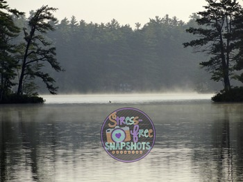 Stress-Free Stock Photo - Lake with Fog