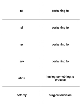 Structure of the Medical Language Prefixes and Suffixes Fl