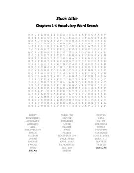Stuart Little Chapters 1-4 Vocabulary Word Search - E.B. White