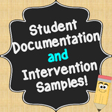 Student Interventions and Documentation Samples