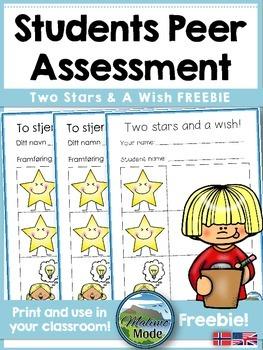 Student Peer Assessment Freebie [English & Norwegian]