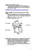 Student Workbook: Adult Health and Individual Development