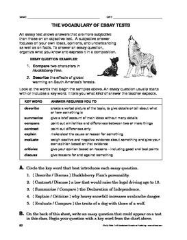 Study Skills: The Vocabulary of Essay Tests