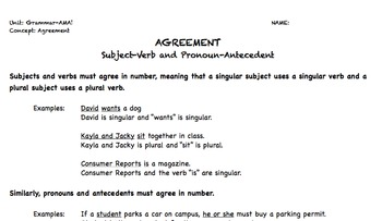 Subject Verb Agreement and Pronoun Antecedent Agreement