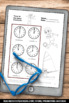 Summer Sports Olympics Math Telling Time Worksheets 1st 2n