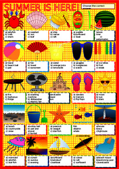 Summer Vocabulary Summer Holidays Powerpoint and Double Co