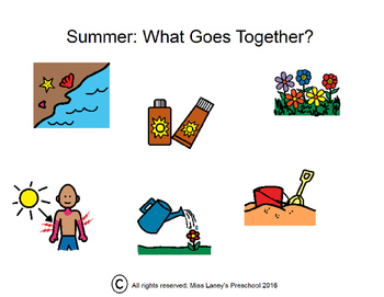 Summer-What goes together visual book