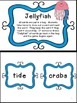 Sunburn & Jellyfish - two differentiated vocabulary games
