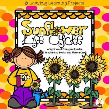 Sunflower Life Cycle (A Sight Word Emergent Reader and Tea