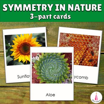 Symmetry in Nature Montessori 3-part Cards