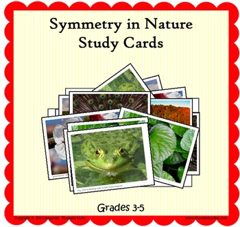Symmetry in Nature Study Cards