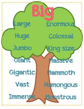 Synonym Chart - Big