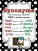 Synonyms, Antonyms, & Homophones POSTERS: Black & White Po