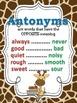 Synonyms, Antonyms, & Homophones POSTERS: Giraffe Theme