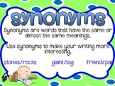 Synonyms & Antonyms Posters - Blue & Green Theme