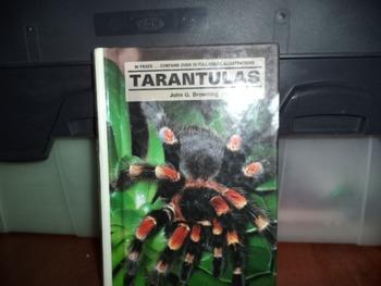 TARANTULAS    ISBN 0-86622-833-0
