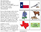 TEXAS State Symbols ADAPTED BOOK for Special Education and Autism