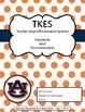 TKES Georgia Teacher Evaluation Binder: Standards and Rubr
