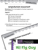 Hi! Fly Guy Comprehension Assessment (Great Works Series)