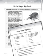 Language Arts Test Preparation Level 4 - Little Bugs, Big