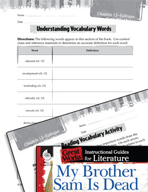 My Brother Sam Is Dead Vocabulary Activities (Great Works Series)