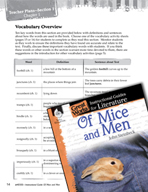 Of Mice and Men Vocabulary Activities (Great Works Series)