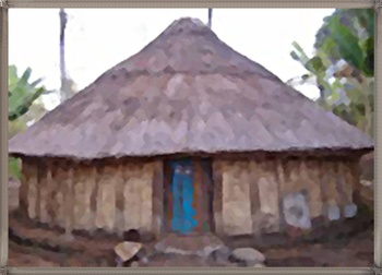 TRADITIONAL HOME 21
