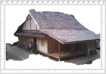 TRADITIONAL HOME CXL