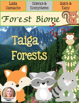 Forest Taiga Forest