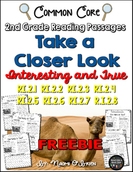 Take a Closer Look: Close Reading for 2nd Grade FREEBIE