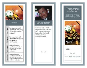 Tangerine Comprehension Brochures