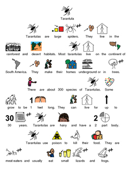 Tarantula - Picture supported text article lesson facts qu