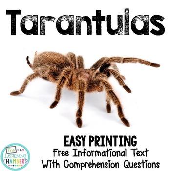 Tarantulas Informational Text: Main Idea, Comprehension Qu