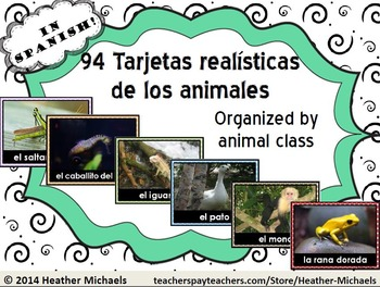Tarjetas realisticas de los animales / Animal Vocabulary F