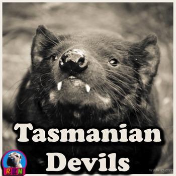 Tasmanian Devils - PowerPoint & Activities