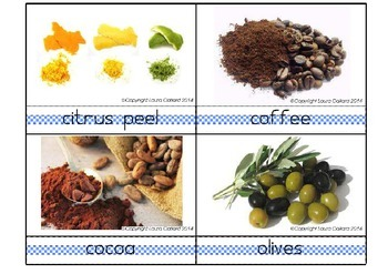 Taste Discussion Cards