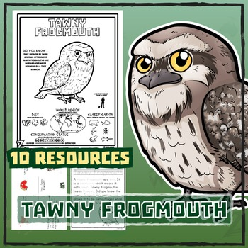 Tawny Frogmouth -- 10 Resources -- Coloring Pages, Reading