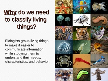 Taxonomy - Classification of Life Overview