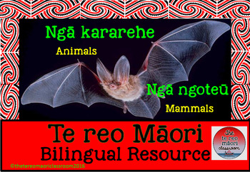 Te reo Māori Animal Flashcards